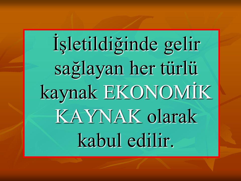 İşletildiğinde gelir sağlayan her türlü kaynak EKONOMİK KAYNAK olarak kabul edilir.