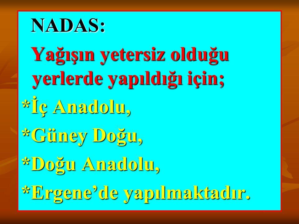 NADAS: Yağışın yetersiz olduğu yerlerde yapıldığı için; *İç Anadolu, *Güney Doğu, *Doğu Anadolu,