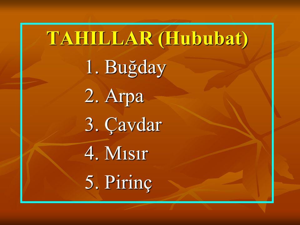 TAHILLAR (Hububat) 1. Buğday 2. Arpa 3. Çavdar 4. Mısır 5. Pirinç