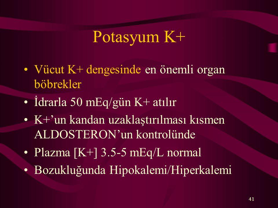 Potasyum K+ Vücut K+ dengesinde en önemli organ böbrekler