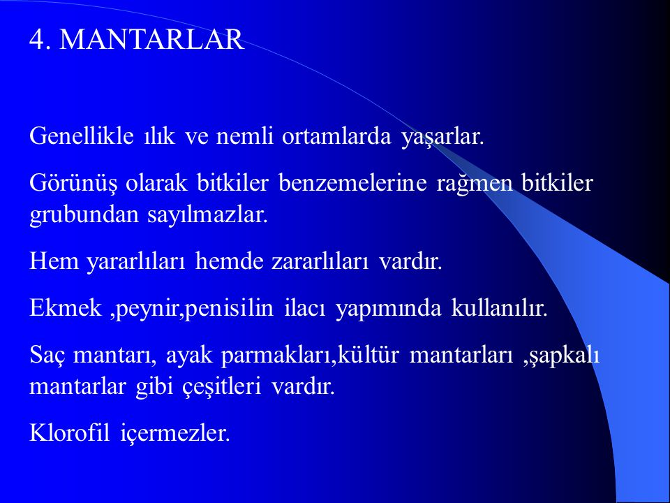 4. MANTARLAR Genellikle ılık ve nemli ortamlarda yaşarlar.