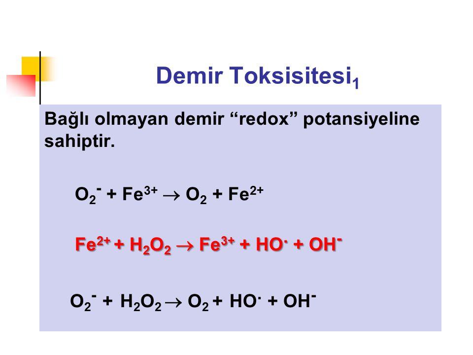 Demir Toksisitesi1 Bağlı olmayan demir redox potansiyeline sahiptir.