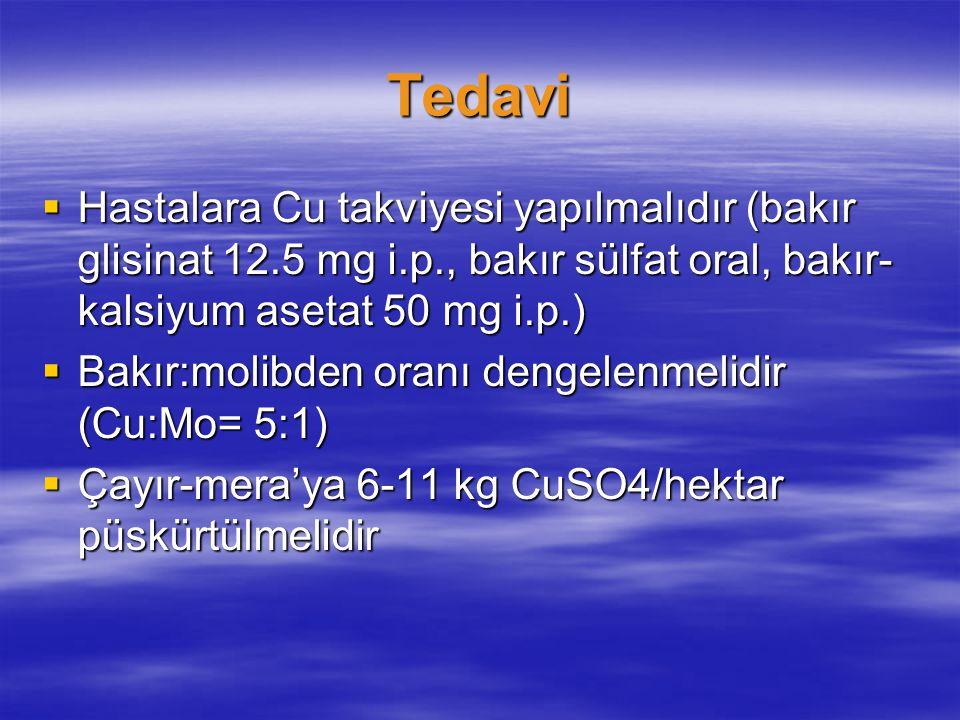 Tedavi Hastalara Cu takviyesi yapılmalıdır (bakır glisinat 12.5 mg i.p., bakır sülfat oral, bakır-kalsiyum asetat 50 mg i.p.)