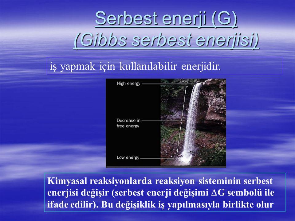 Serbest enerji (G) (Gibbs serbest enerjisi)