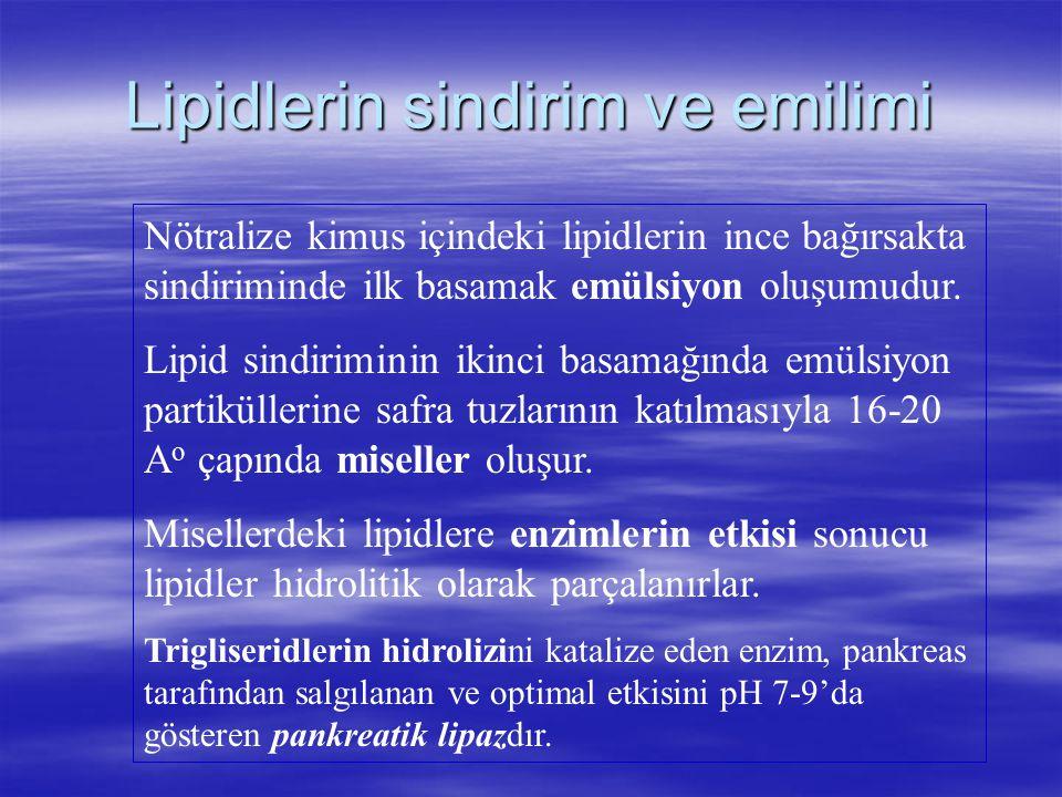 Lipidlerin sindirim ve emilimi