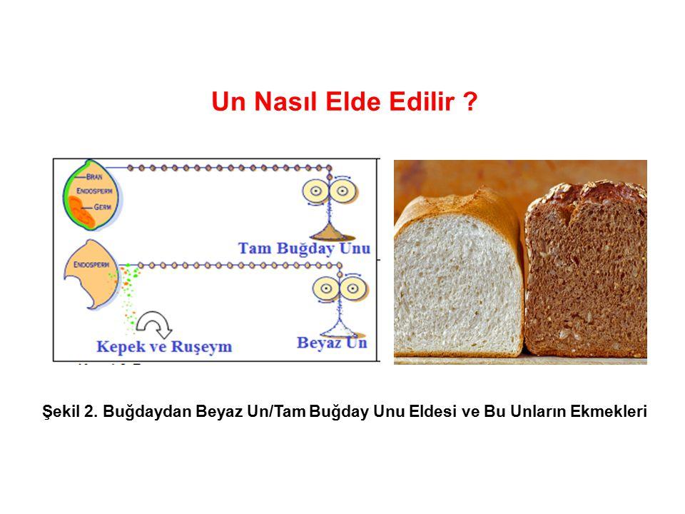 Un Nasıl Elde Edilir Şekil 2. Buğdaydan Beyaz Un/Tam Buğday Unu Eldesi ve Bu Unların Ekmekleri 20