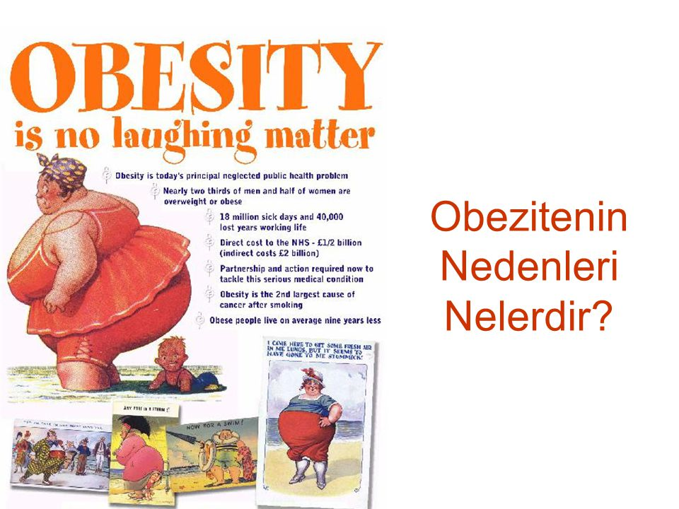 Obezitenin Nedenleri Nelerdir