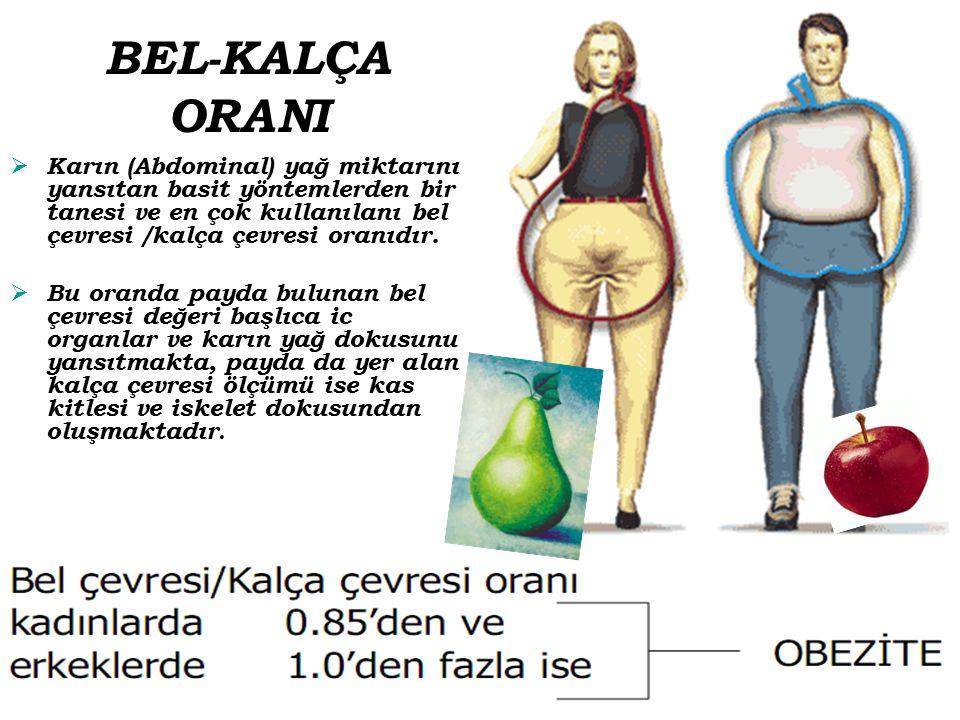 BEL-KALÇA ORANI Karın (Abdominal) yağ miktarını yansıtan basit yöntemlerden bir tanesi ve en çok kullanılanı bel çevresi /kalça çevresi oranıdır.