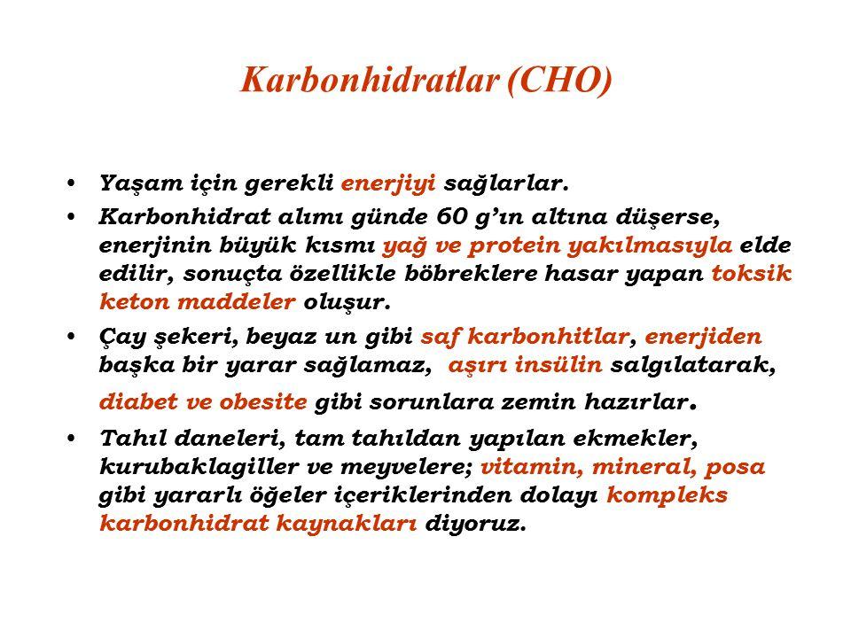 Karbonhidratlar (CHO)