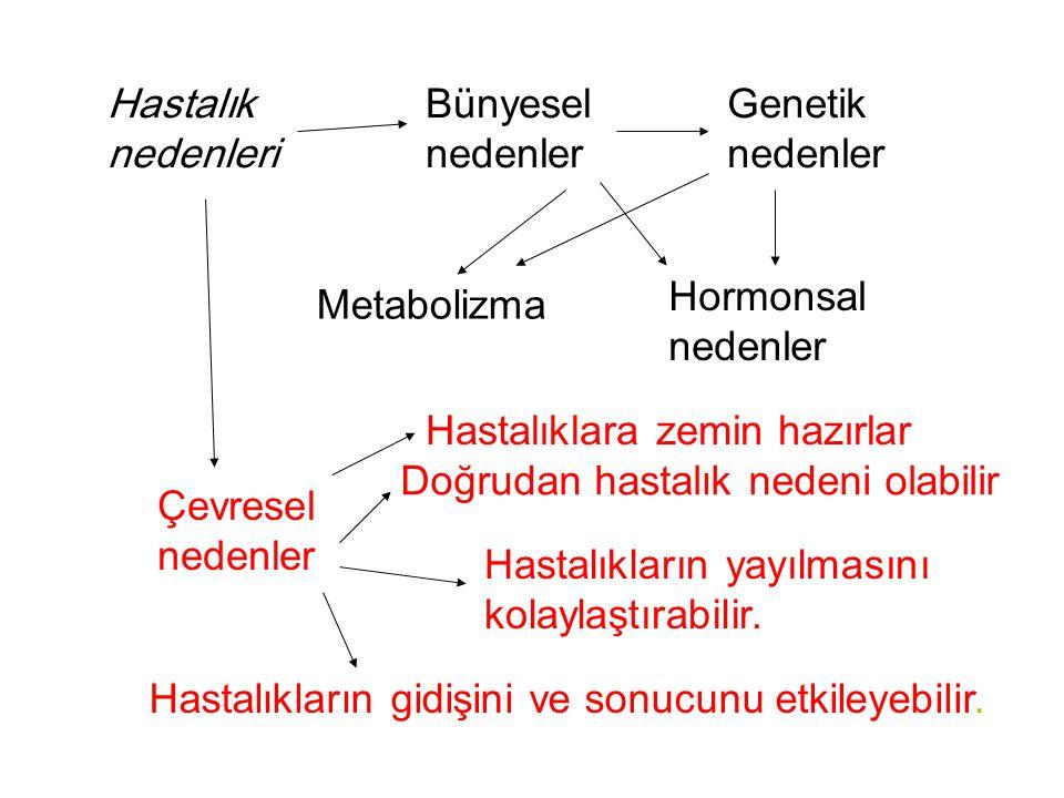 Hastalık nedenleri Bünyesel nedenler. Genetik nedenler. Hormonsal nedenler. Metabolizma. Hastalıklara zemin hazırlar.