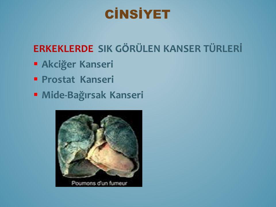CİNSİYET ERKEKLERDE SIK GÖRÜLEN KANSER TÜRLERİ Akciğer Kanseri