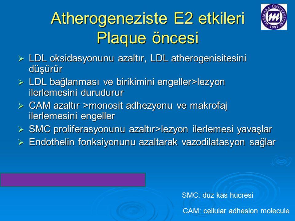 Atherogeneziste E2 etkileri Plaque öncesi