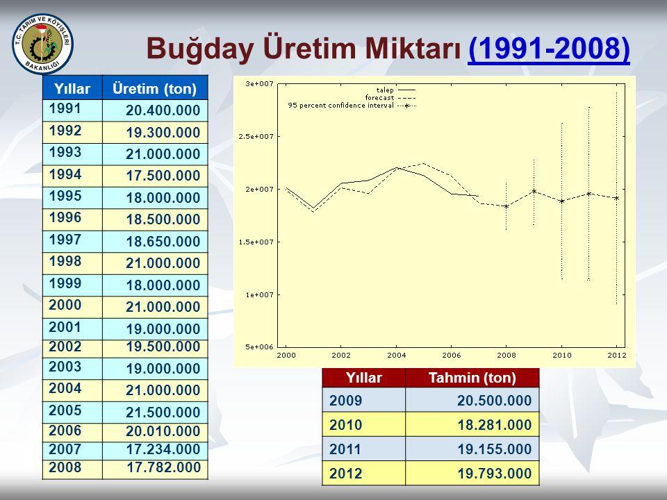 Buğday Üretim Miktarı (1991-2008)