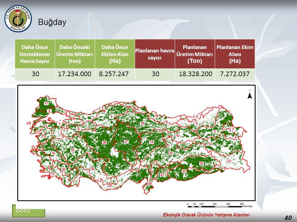 Buğday 30 17.234.000 8.257.247 18.328.200 7.272.037 <<<<