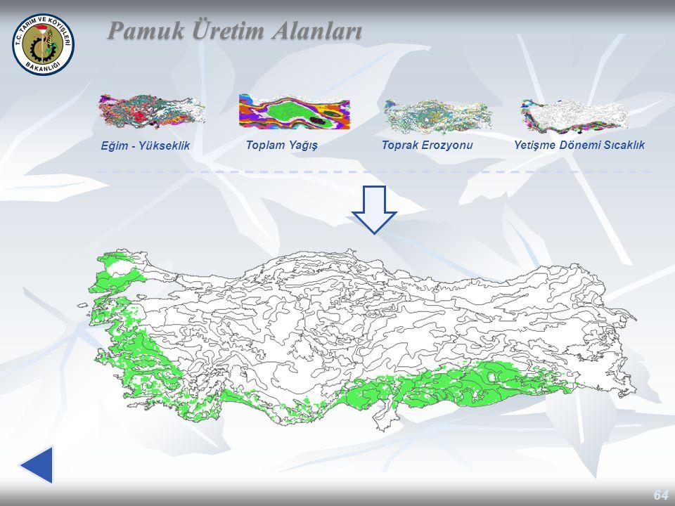 Pamuk Üretim Alanları Eğim - Yükseklik Toplam Yağış Toprak Erozyonu