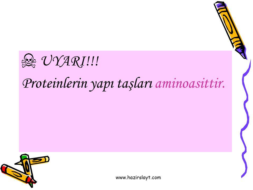 Proteinlerin yapı taşları aminoasittir.