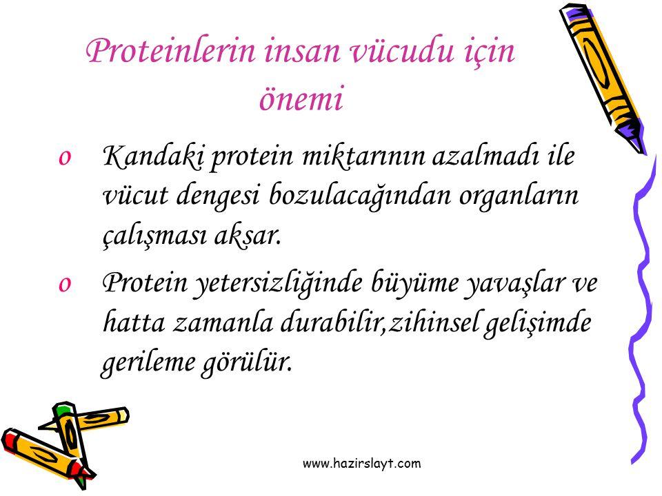 Proteinlerin insan vücudu için önemi