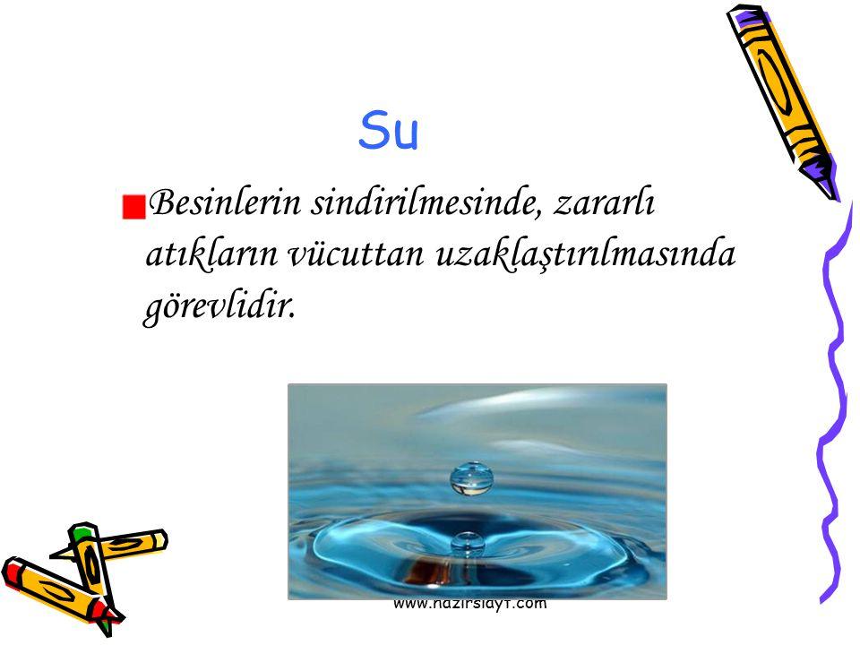 Su Besinlerin sindirilmesinde, zararlı atıkların vücuttan uzaklaştırılmasında görevlidir.