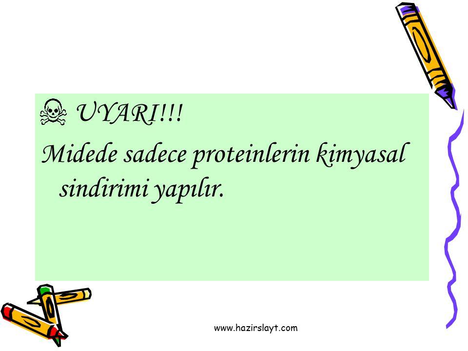 Midede sadece proteinlerin kimyasal sindirimi yapılır.