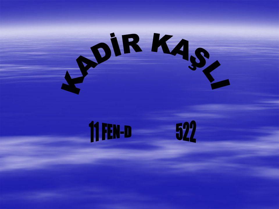 KADİR KAŞLI 11 FEN-D 522