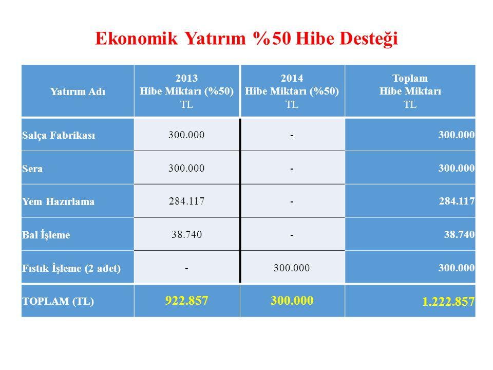 Ekonomik Yatırım %50 Hibe Desteği