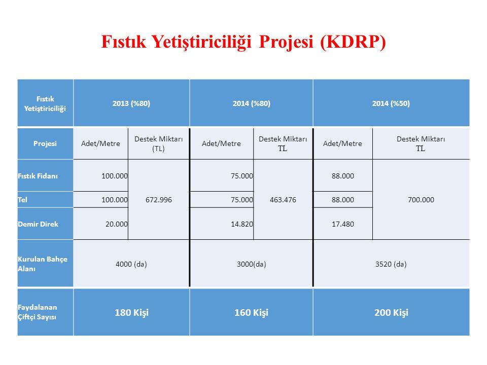 Fıstık Yetiştiriciliği Projesi (KDRP)