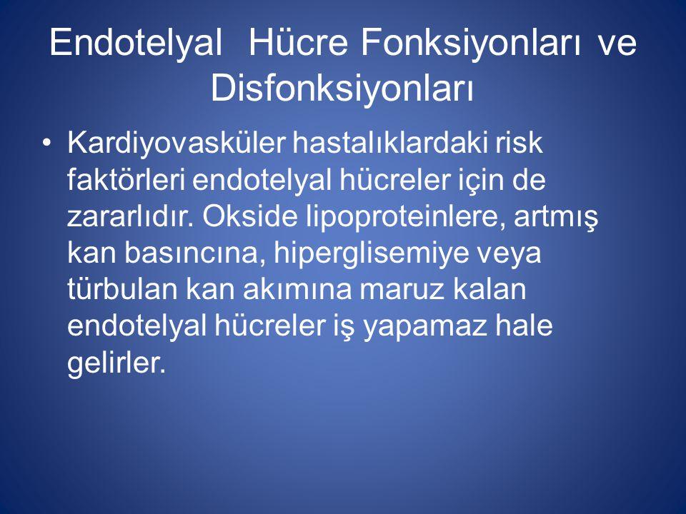 Endotelyal Hücre Fonksiyonları ve Disfonksiyonları