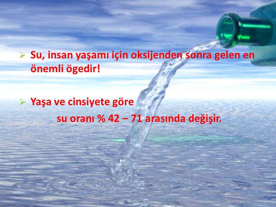 su oranı % 42 – 71 arasında değişir.