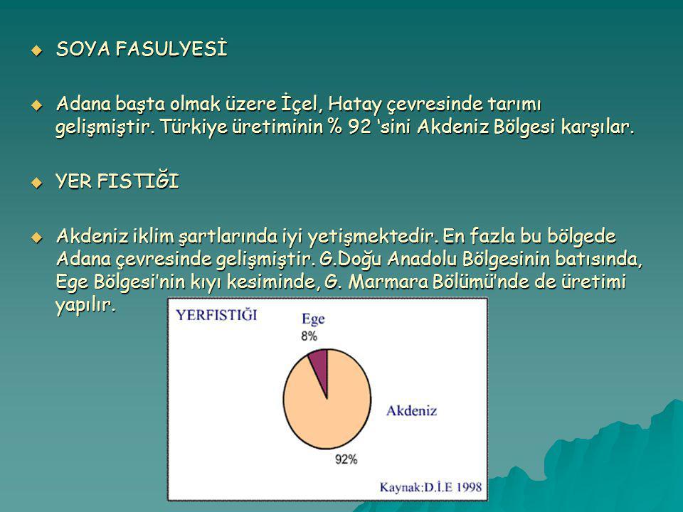 SOYA FASULYESİ Adana başta olmak üzere İçel, Hatay çevresinde tarımı gelişmiştir. Türkiye üretiminin % 92 'sini Akdeniz Bölgesi karşılar.