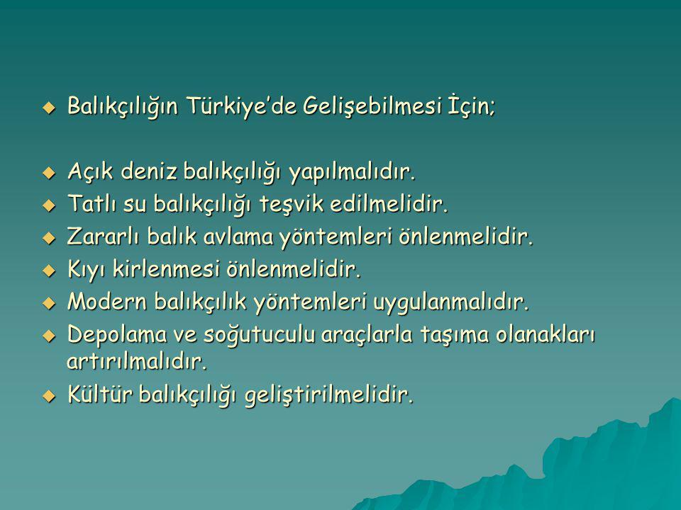 Balıkçılığın Türkiye'de Gelişebilmesi İçin;