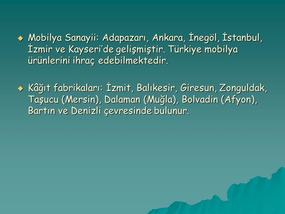Mobilya Sanayii: Adapazarı, Ankara, İnegöl, İstanbul, İzmir ve Kayseri'de gelişmiştir. Türkiye mobilya ürünlerini ihraç edebilmektedir.