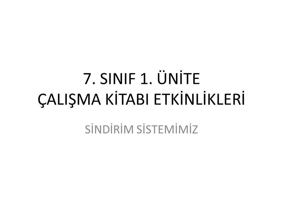 7. SINIF 1. ÜNİTE ÇALIŞMA KİTABI ETKİNLİKLERİ