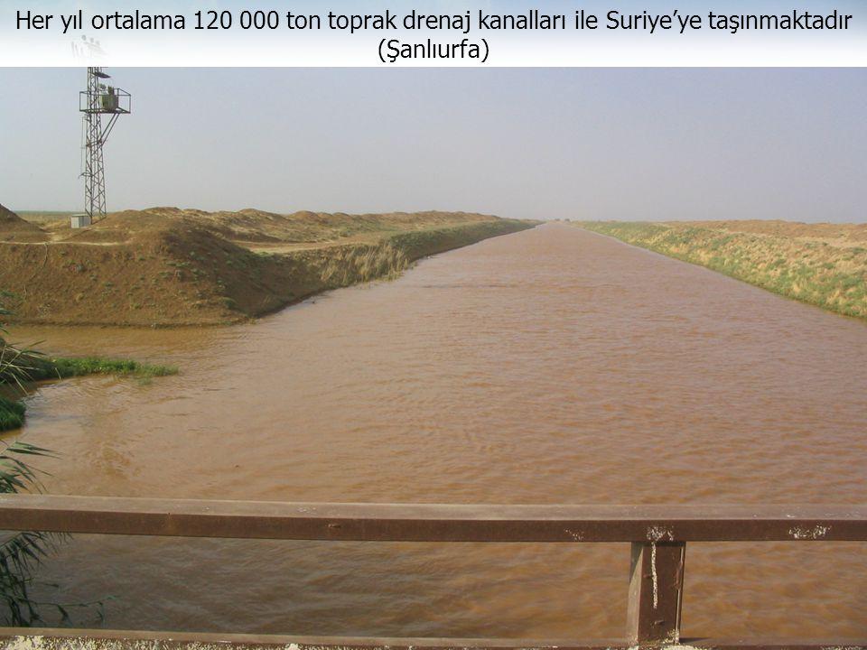Her yıl ortalama 120 000 ton toprak drenaj kanalları ile Suriye'ye taşınmaktadır (Şanlıurfa)