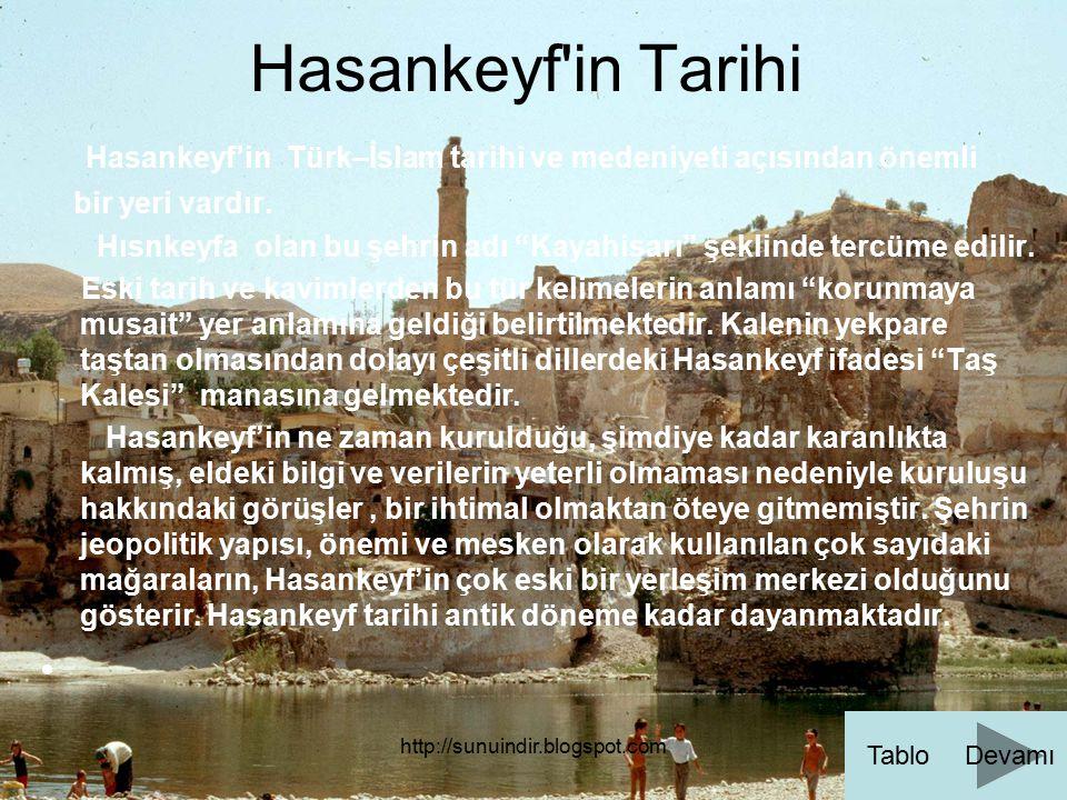 Hasankeyf in Tarihi Hasankeyf'in Türk–İslam tarihi ve medeniyeti açısından önemli. bir yeri vardır.