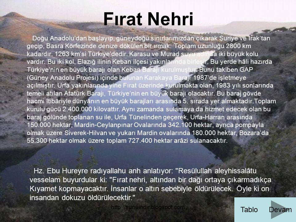 Fırat Nehri Doğu Anadolu'dan başlayıp, güneydoğu sınırlarımızdan çıkarak Suriye ve Irak'tan.