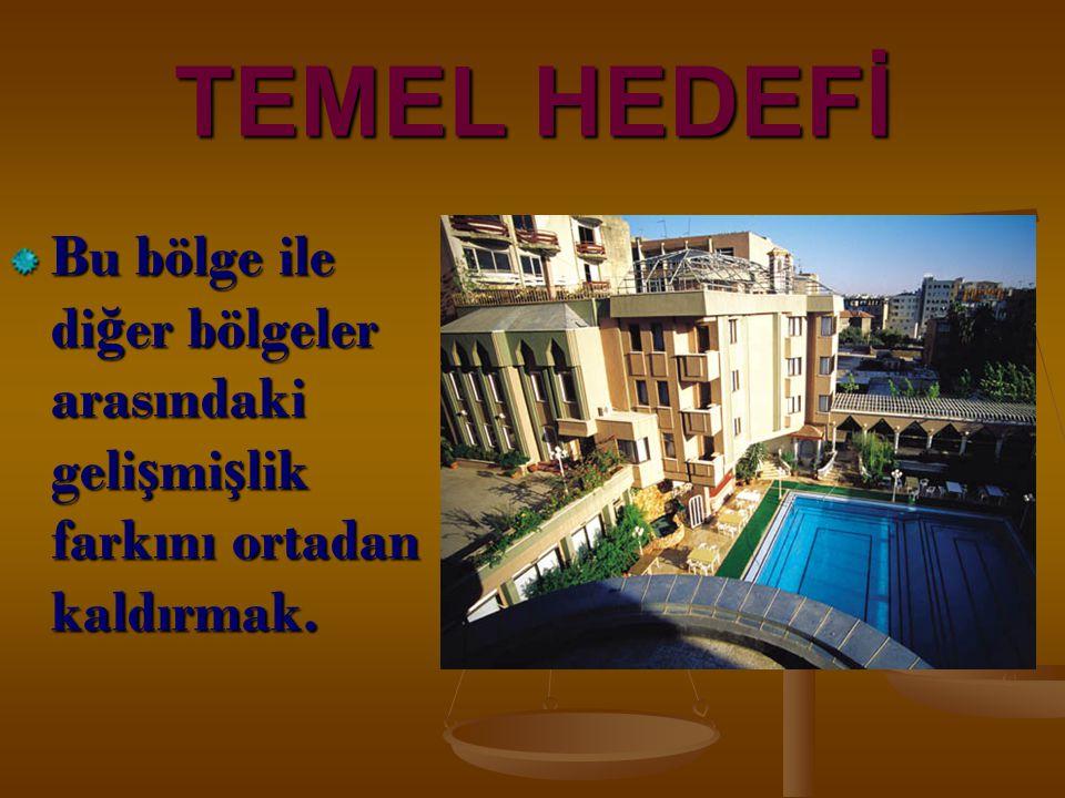 TEMEL HEDEFİ Bu bölge ile diğer bölgeler arasındaki gelişmişlik farkını ortadan kaldırmak. 5