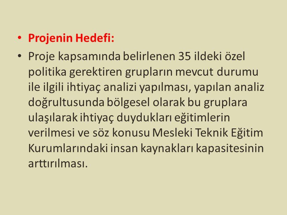 Projenin Hedefi: