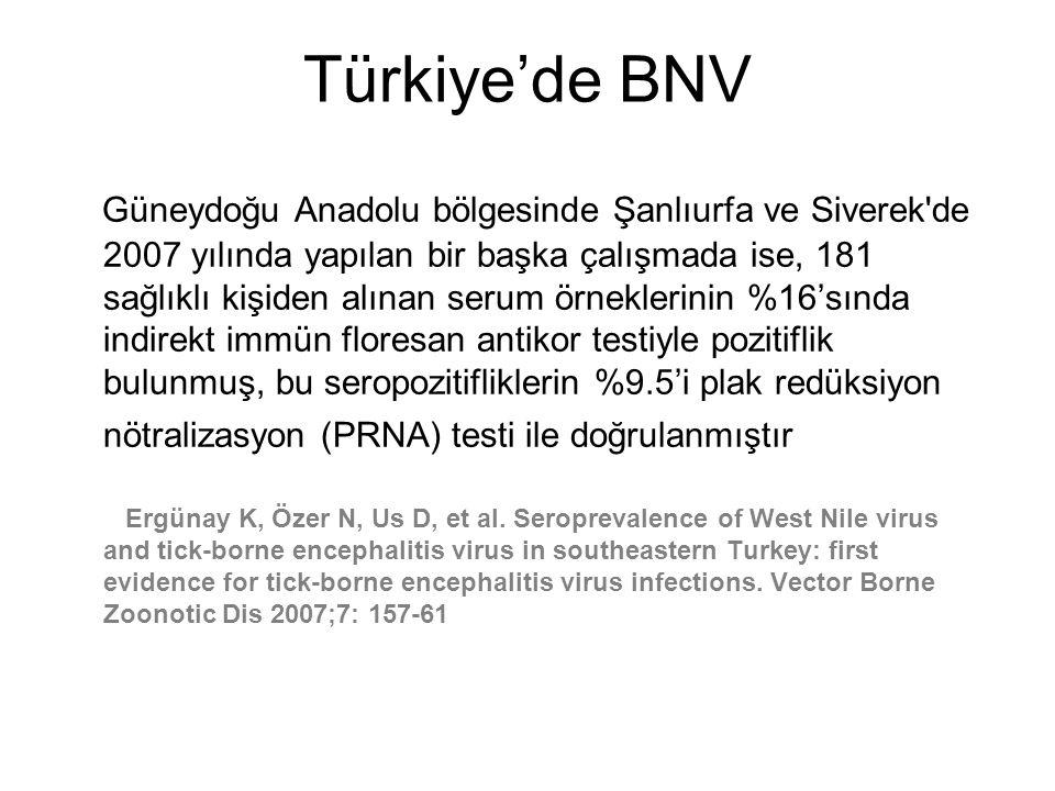 Türkiye'de BNV