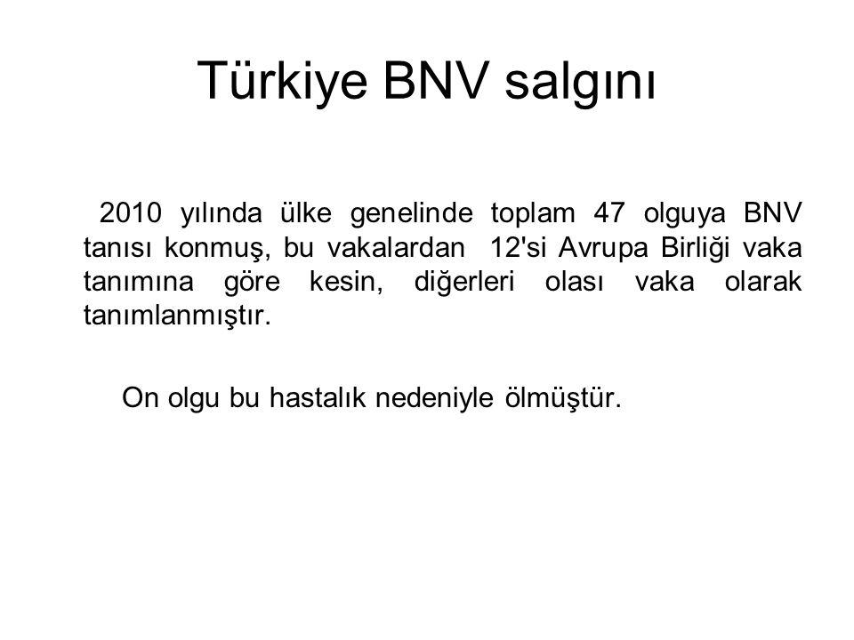 Türkiye BNV salgını