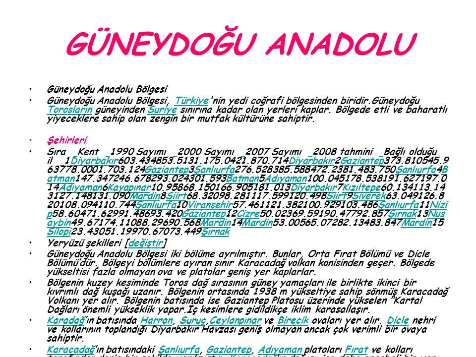 GÜNEYDOĞU ANADOLU Güneydoğu Anadolu Bölgesi