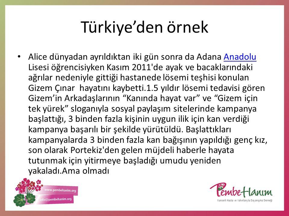 Türkiye'den örnek