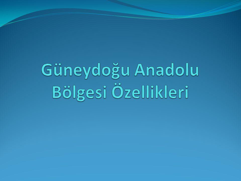 Güneydoğu Anadolu Bölgesi Özellikleri