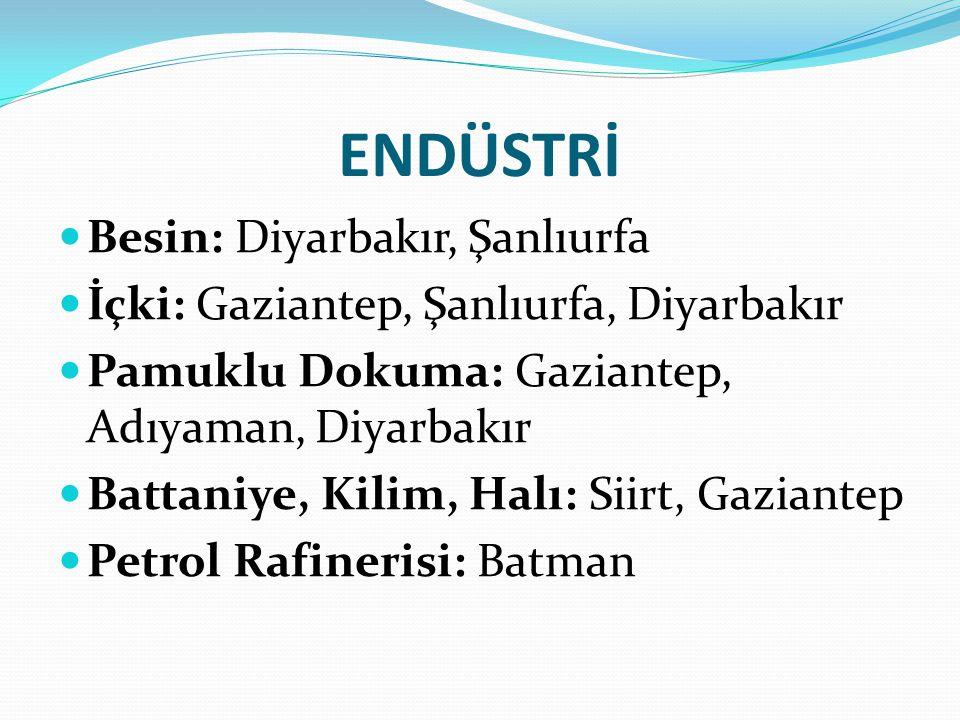 ENDÜSTRİ Besin: Diyarbakır, Şanlıurfa