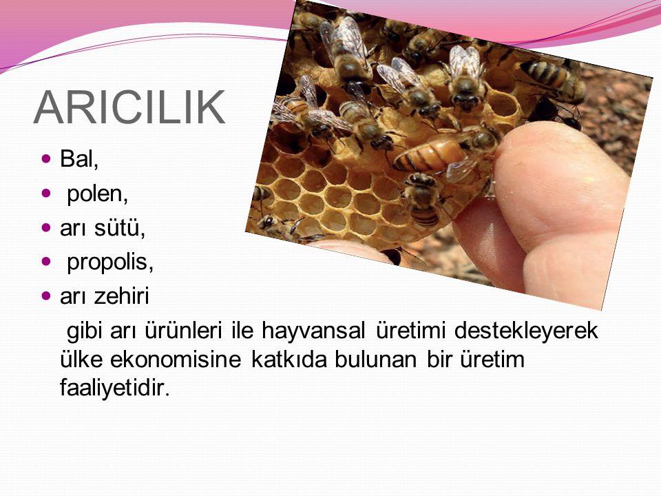 ARICILIK Bal, polen, arı sütü, propolis, arı zehiri