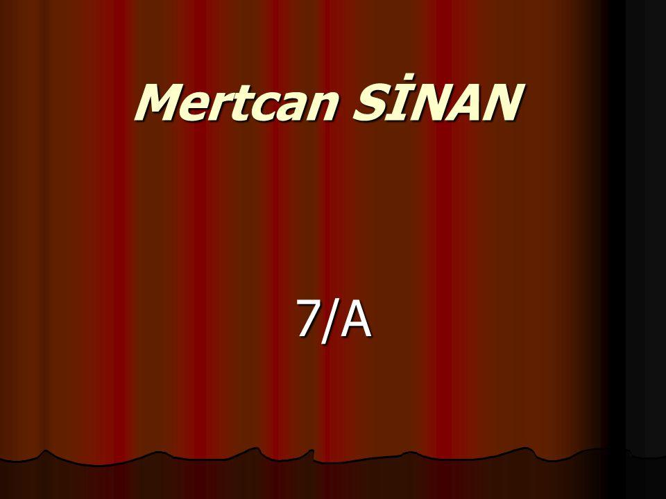 Mertcan SİNAN 7/A
