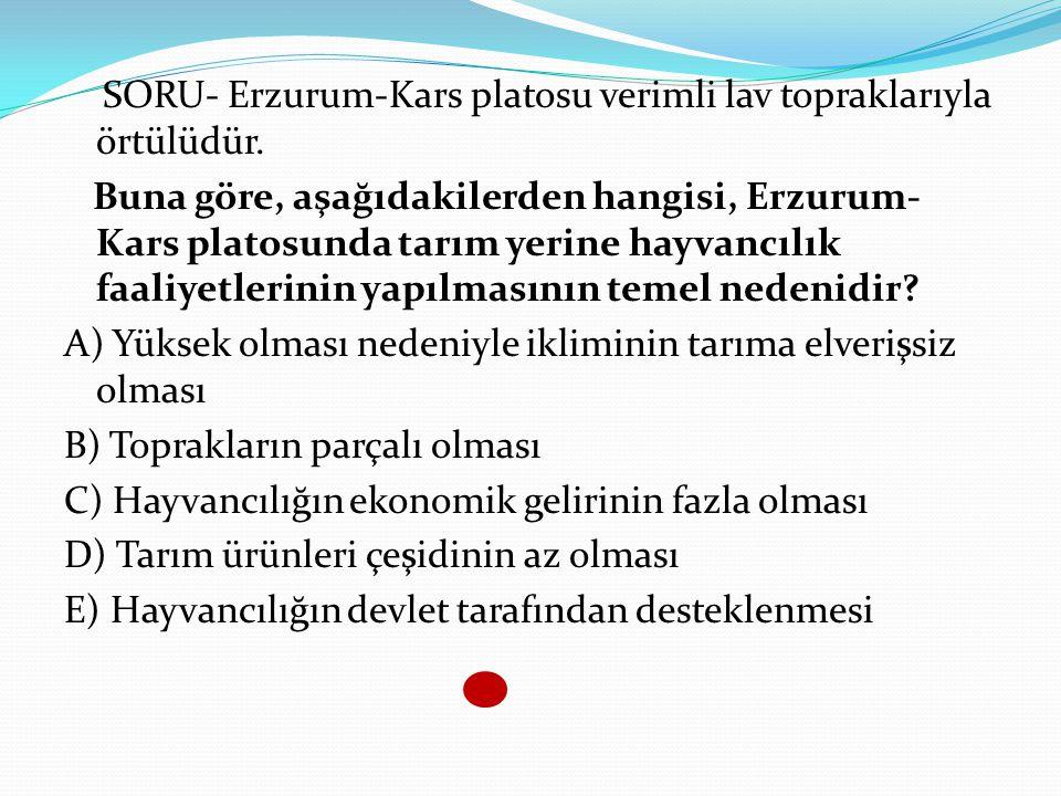 SORU- Erzurum-Kars platosu verimli lav topraklarıyla örtülüdür.