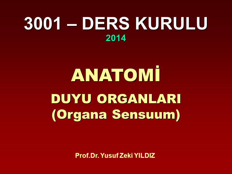 Prof.Dr. Yusuf Zeki YILDIZ