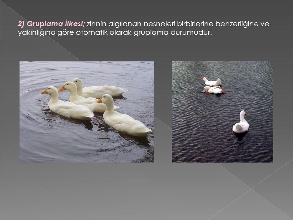 2) Gruplama İlkesi; zihnin algılanan nesneleri birbirlerine benzerliğine ve yakınlığına göre otomatik olarak gruplama durumudur.