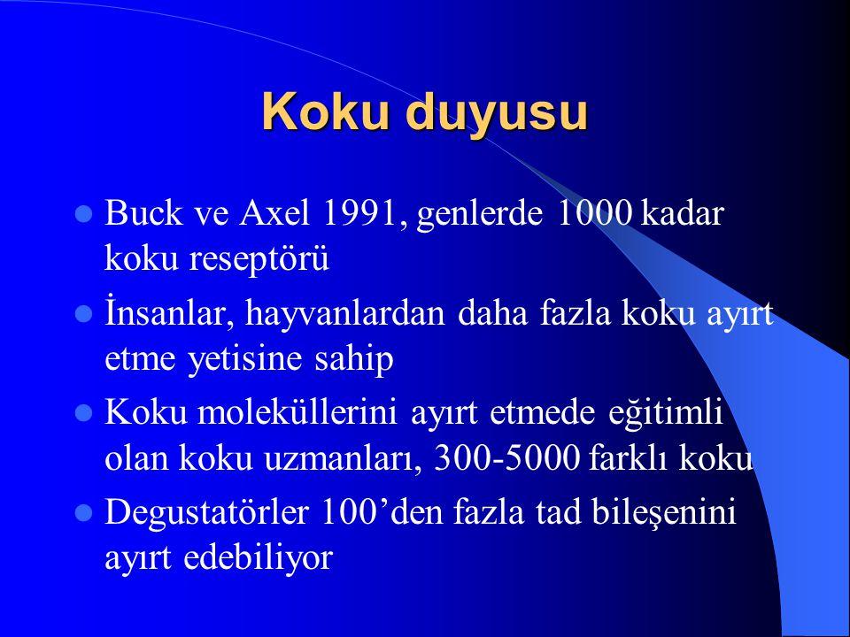 Koku duyusu Buck ve Axel 1991, genlerde 1000 kadar koku reseptörü