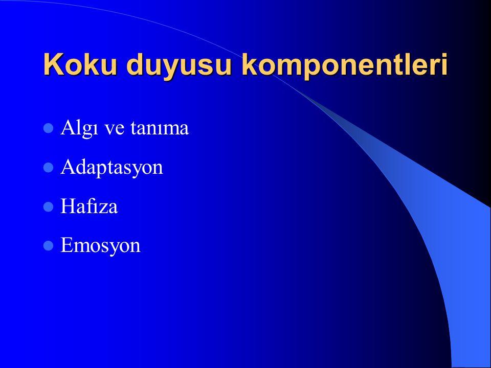 Koku duyusu komponentleri